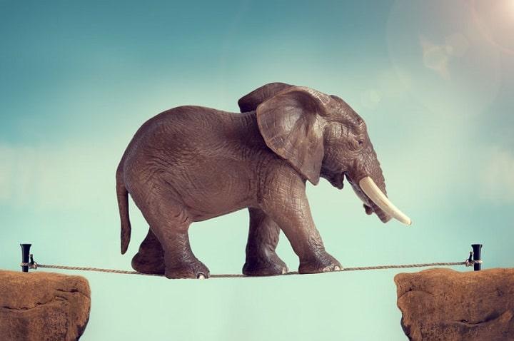 象の綱渡り